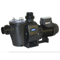 Waterco Hydrostorm ECO-V 100 pump