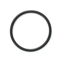 AstralPool / Viron / Hurlcon O ring for 50mm MPV union adapter E, RX series - 70009
