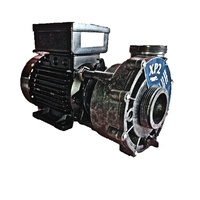 Aqua-Flo XP2 1.5hp 2 speed Spa Pump