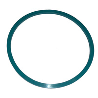 Clearwater Chlorinator Generic Bayonet Cell O-Ring