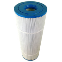 Sundance Spas C90 Filter Cartridge