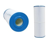 EC100 Poolrite Enduro Pool Filter Cartridge