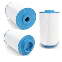 Poolrite Watermizer 130 filter cartridge